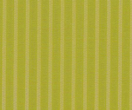 trans stripe grün 010-95