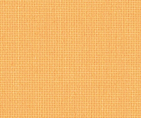 Julia orange 040-11_g6