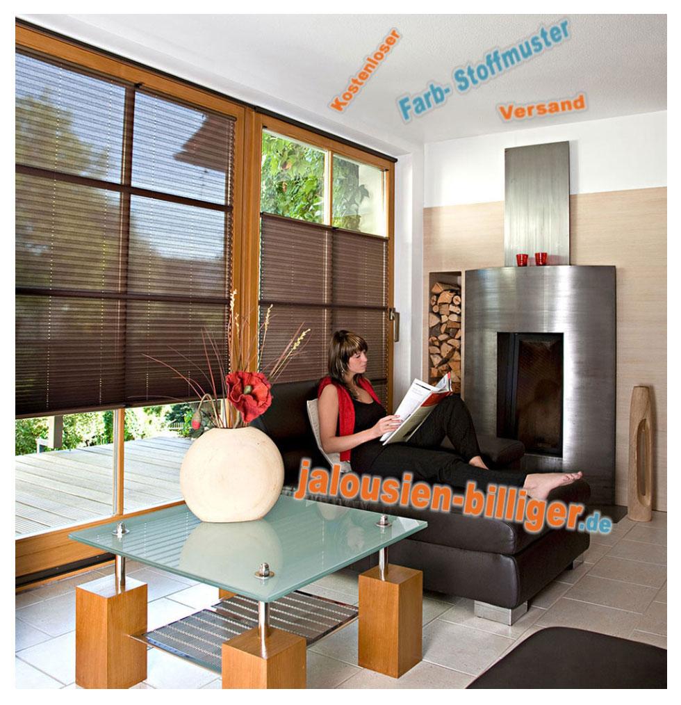 transparente plissees. Black Bedroom Furniture Sets. Home Design Ideas